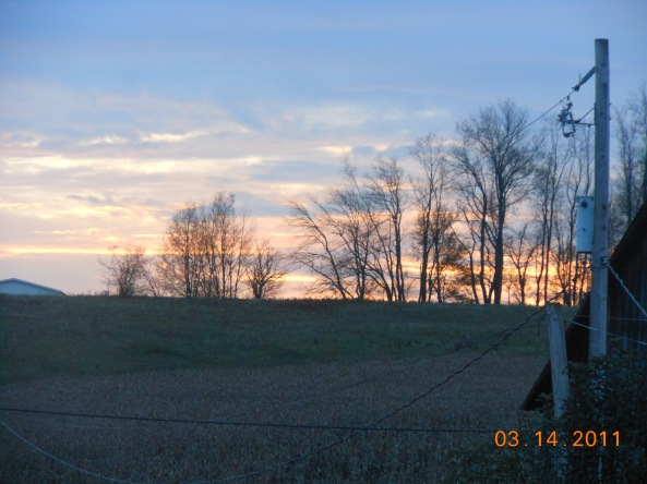 October and November 2012 019