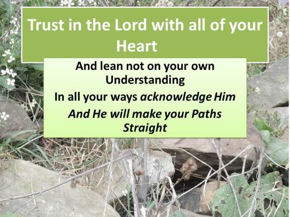 Trust in the Lord with all of your