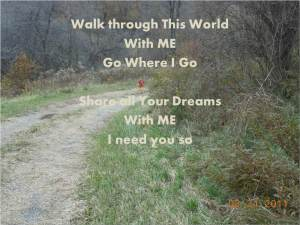Walk through this world