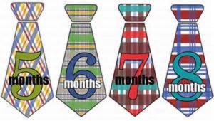 8 month tie